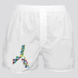 DNA replication, artwork Boxer Shorts