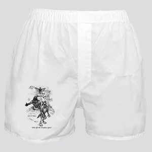 Window Area Boxer Shorts