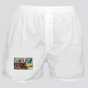 """Color of Money"" Hereford Boxer Shorts"