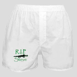 325e12b89c91 Rip Steve Irwin Underwear & Panties - CafePress