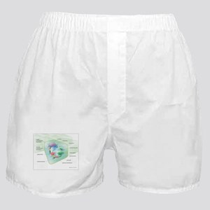 Plant Cell Boxer Shorts