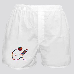 The Reader Boxer Shorts