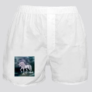 Wonderful unicorn on the beach Boxer Shorts