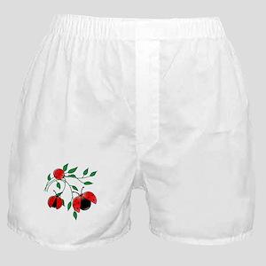 37a06e8d741b Delicate Ladybugs on Graceful Leaves Boxer Shorts