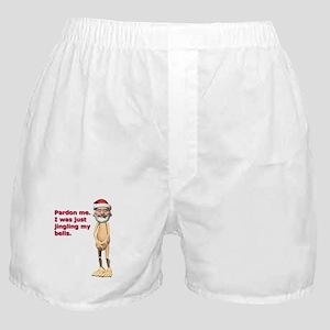 478fca46031 Funny Christmas Joke Underwear   Panties - CafePress