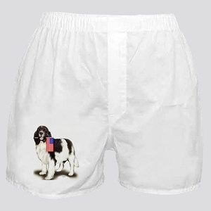Landseer with flag Boxer Shorts