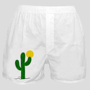 c05f7ddb7d45 Underwear & Panties. Cactus116 Boxer Shorts