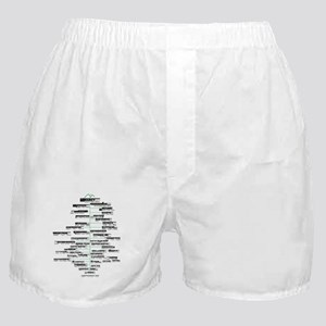 ADK high peaks christmas Boxer Shorts