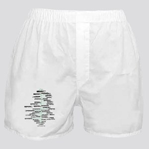 ADK High Peaks Holiday Boxer Shorts