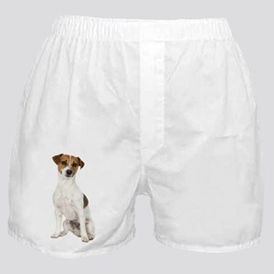 FIN-JRT-photo-TRANS-2 Boxer Shorts