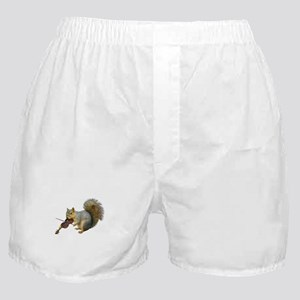 Squirrel Violin Boxer Shorts