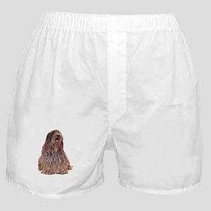 Bergamasco Sheepdog Sitting Boxer Shorts