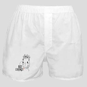 Funny Horse Boxer Shorts