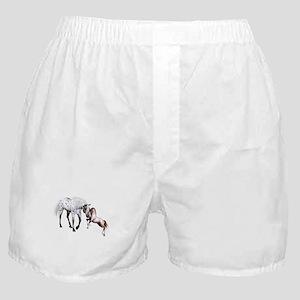 Horses Love Forever Boxer Shorts
