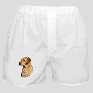 Labrador Retriever 9Y297D-038a Boxer Shorts