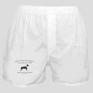 Boston Terrier Pawprints Boxer Shorts
