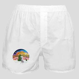 Xmusic2-White Boxer (n) Boxer Shorts