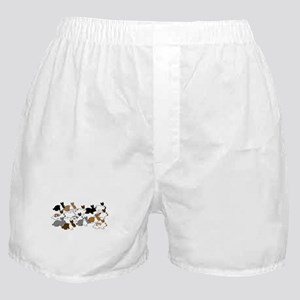 Many Bunnies Boxer Shorts