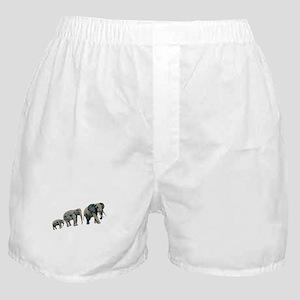 GUIDANCE Boxer Shorts