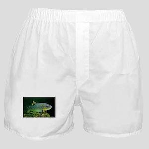 BROWN TROUT Boxer Shorts