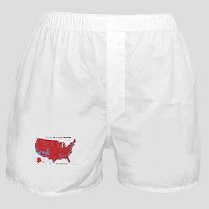 Trump vs Clinton Map Boxer Shorts