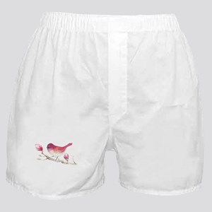 Pink Sparrow Bird on Magnolia Flower Boxer Shorts