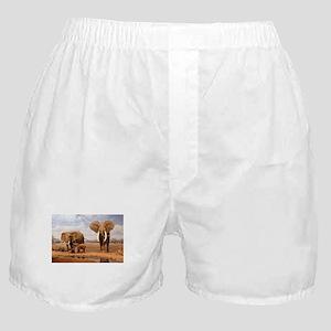 Family Of Elephants Boxer Shorts