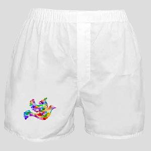 Rainbow Dove of Hearts Boxer Shorts