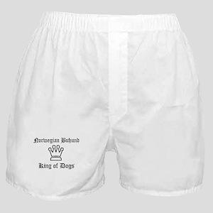 Norwegian Buhund - King of Do Boxer Shorts