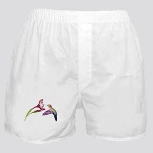 Hummingbird in flight Boxer Shorts