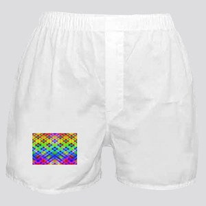 Rainbow Plaid Boxer Shorts