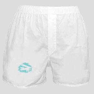 Biplane Cloud Silhouette Boxer Shorts