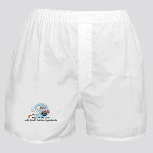 Stork Baby South Africa USA Boxer Shorts