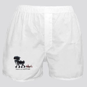 Affenpinscher Places Boxer Shorts