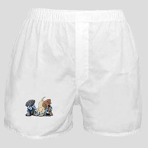 Lab Play Boxer Shorts
