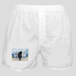 Wild Black Beauty Leader Boxer Shorts