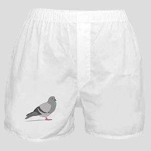 Cartoon Pigeon Boxer Shorts