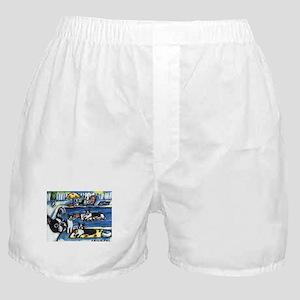 BOSTON TERRIER summer pool Boxer Shorts