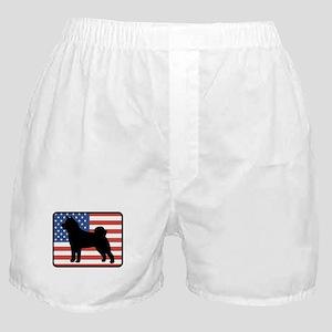 American Akita Boxer Shorts
