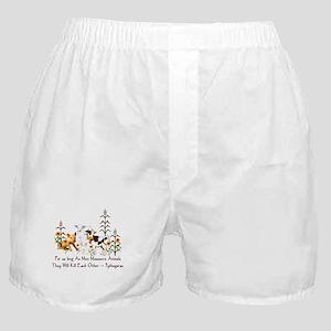 Pythagoras Vegetarian Quote Boxer Shorts