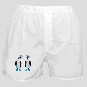 Pair of Boobys Boxer Shorts