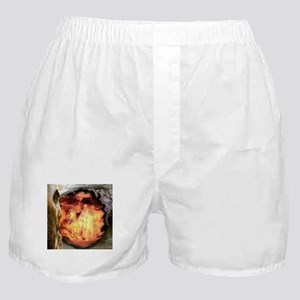 Nebuchadnezzar And The Fiery Furnace Boxer Shorts
