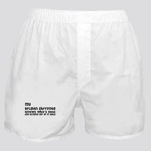 My Belgian Sheep Dog Designs Boxer Shorts