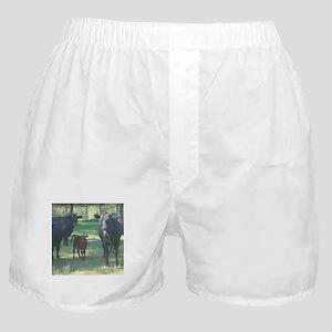 black angus Boxer Shorts