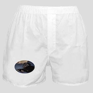 sleep Boxer Shorts