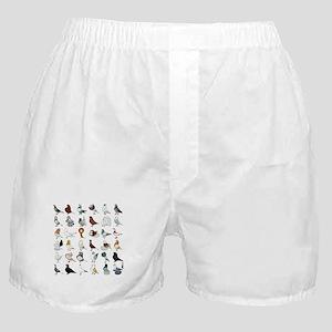 36 Pigeon Breeds Boxer Shorts