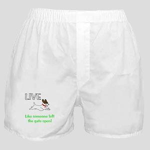 Live the gates open Boxer Shorts
