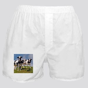 Family portrait Boxer Shorts