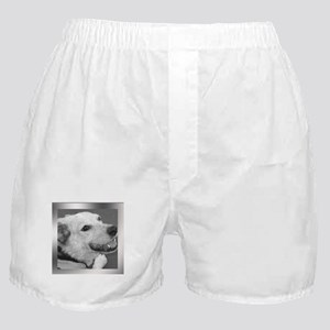 Your Photo in a Silver Frame Boxer Shorts