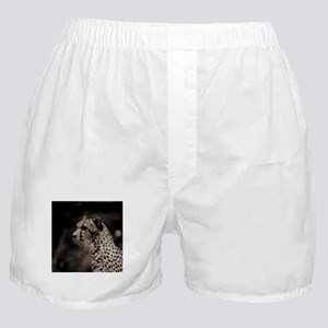 Abstract Animal Boxer Shorts